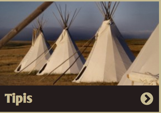 tipi door cover